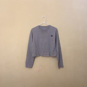 Cropped champion top